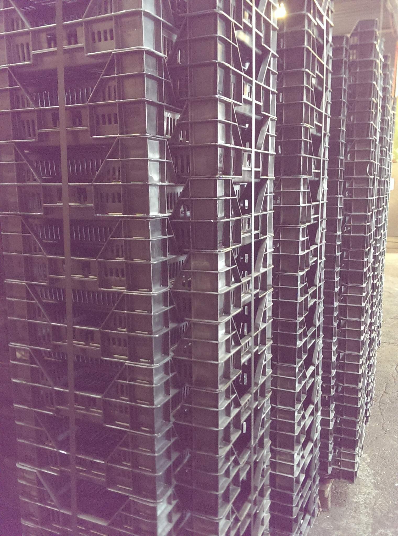 K&B Industrieservice Reinigung Pflanzbehälter